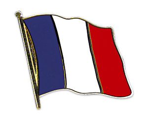 Flag Pins (swinging): France