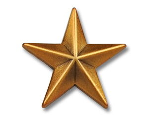 Pins Golden Star 15 mm